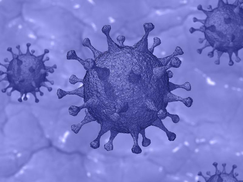 Diagnóstico y tratamiento de pacientes con cáncer de mama durante la epidemia de COVID19